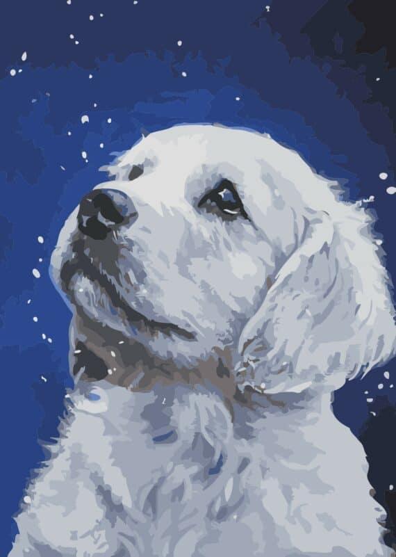 Malowanie po numerach – Labrador