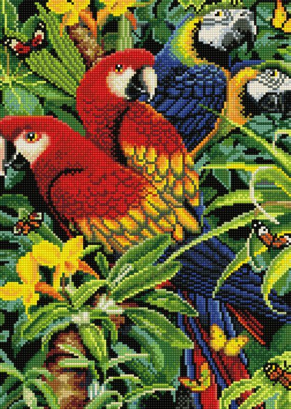 Haft diamentowy – Papugi